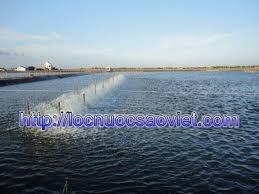 Nước dùng cho nuôi trồng thủy sản