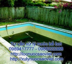Các loại rêu tảo trong bể bơi