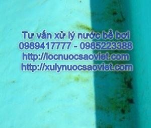 Xử lý nước bể bơi có màu vàng do nhiễm tảo vàng
